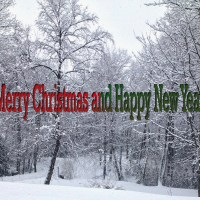 A Nature Christmas - Thank You