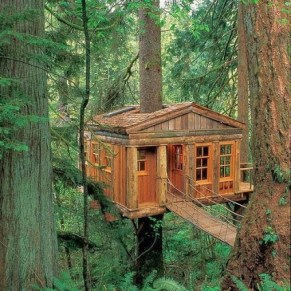 usa-Treehouse, Issaquah, Washington