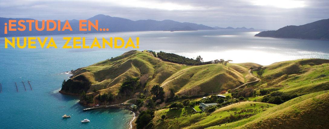 Estudiar en Nueva Zelanda un curso diferente a inglés