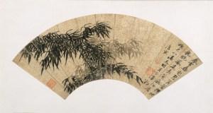 bamboo spring
