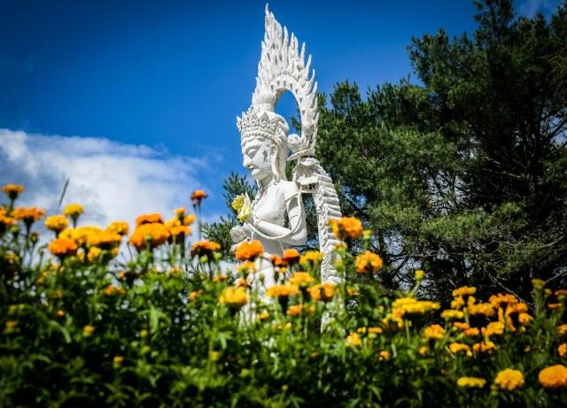 baoma statues 2 (1 of 1)