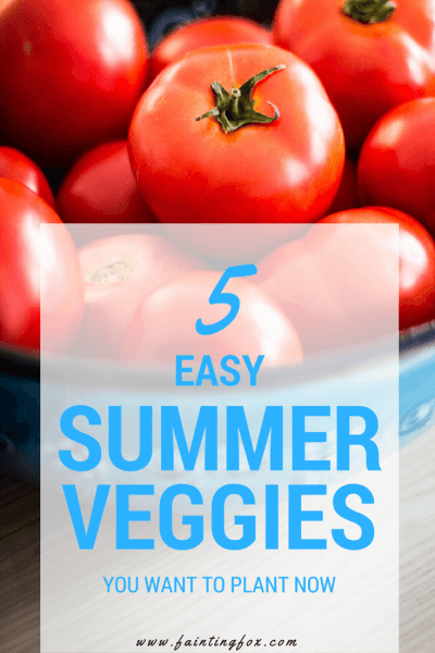 5 Easy Summer Vegetables You Want to Plant Now