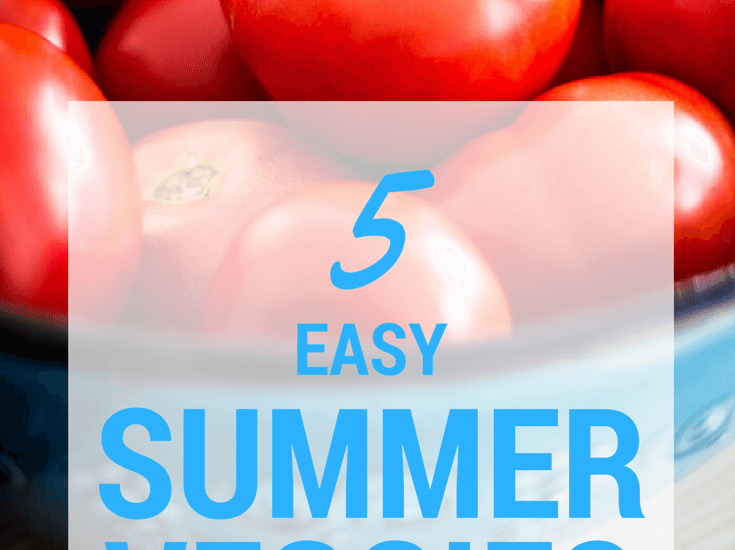 easy-summer-vegetables-garden