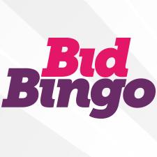 Bid Bingo Casino Review (2020)