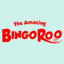 Bingoroo Casino Review (2020)