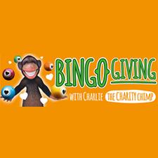 Bingo Giving Casino Review (2020)