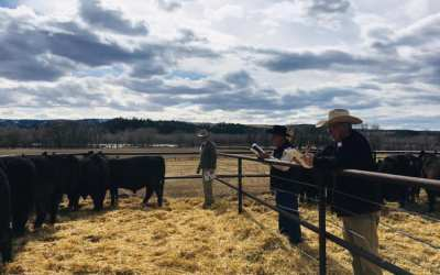 VIDEO: Leo McDonnell discusses the importance of labeling American beef