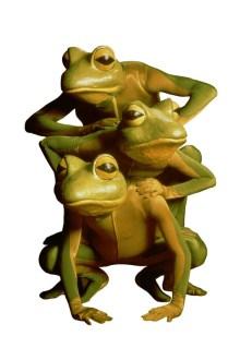 Imago_Theater_Frogz_1