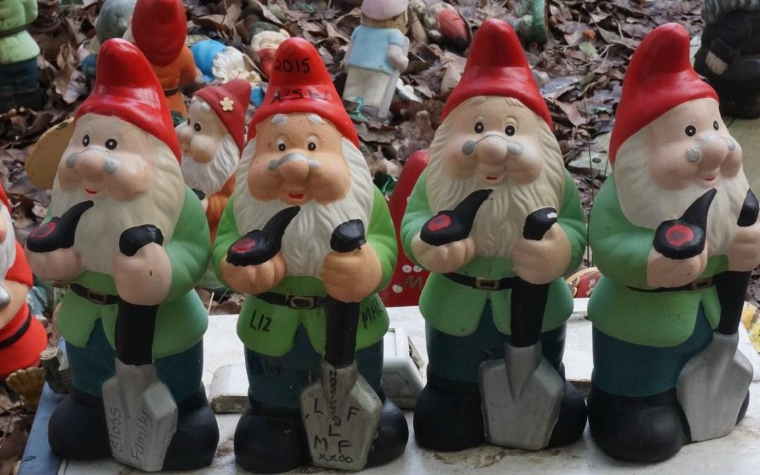 The Gnomes of Gnomesville