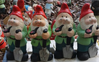 The Gnomes of Gnomesville