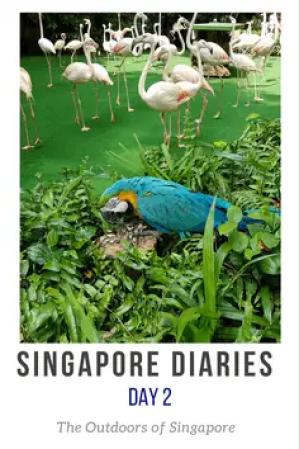 Outdoors Singapore