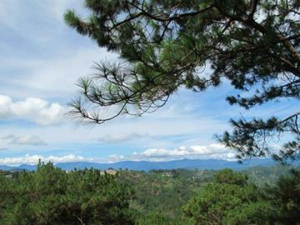 5 Things To See And Do In Baguio - Philippines