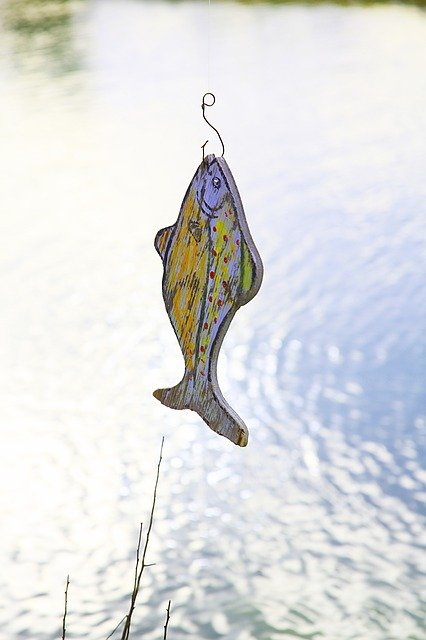 Faux poisson canular