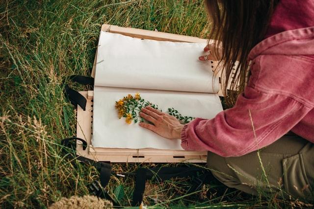 Activité thème nature environnement herbier