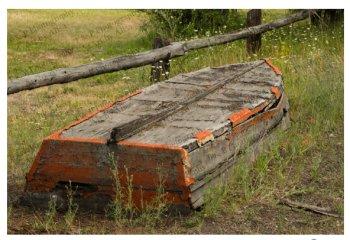 TnP Boat