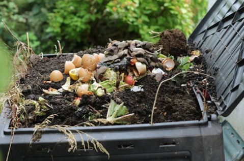 compost your grass clippings, leaves, small branches and food scraps
