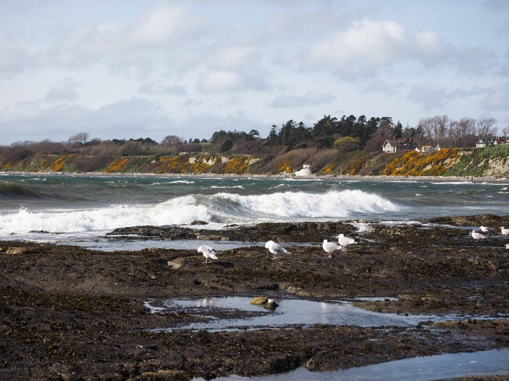 white waves crashing onto rocks