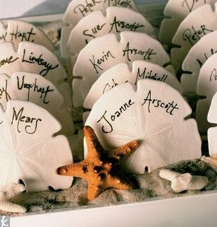 Sand Dollar Escort Cards - Fairly Southern