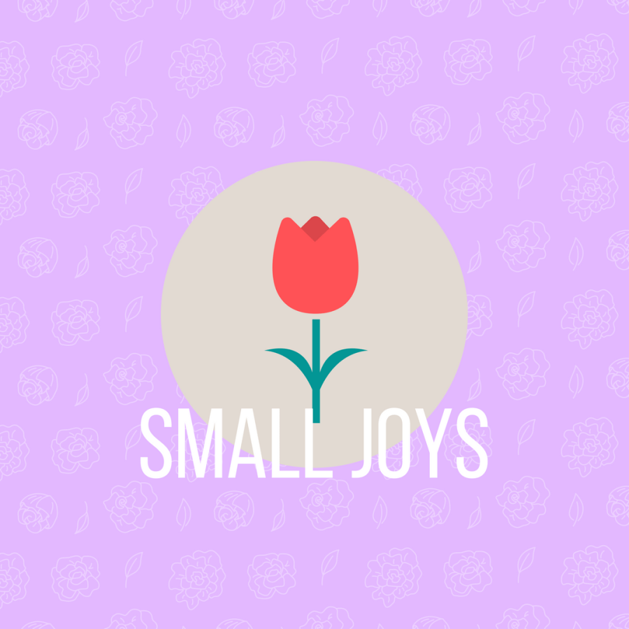 Small Joys: Volume 9
