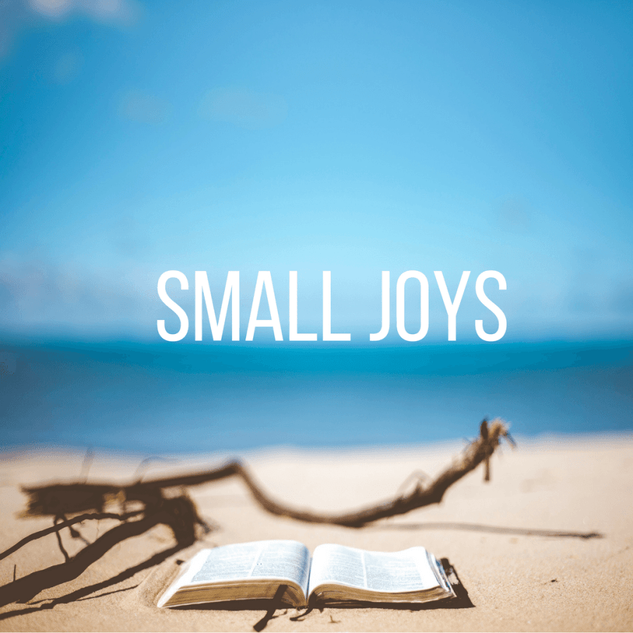 Small Joys: Volume 27