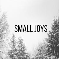 Small Joys   Fairly Southern