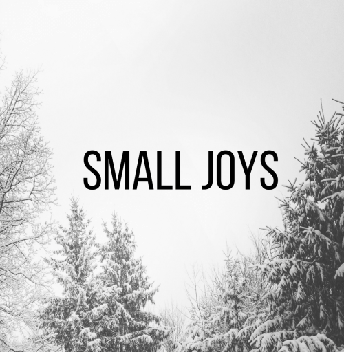 Small Joys | Fairly Southern