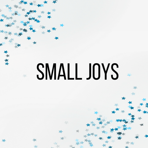 Small Joys: Volume 8 | Fairly Southern