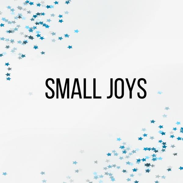 Small Joys: Volume 8 | Fairly Southern