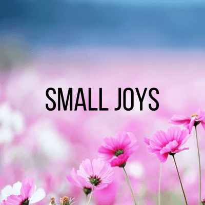 Small Joys: Volume 26