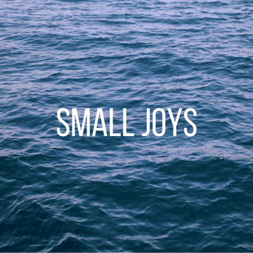 Small Joys: Volume 12  |  Fairly Southern