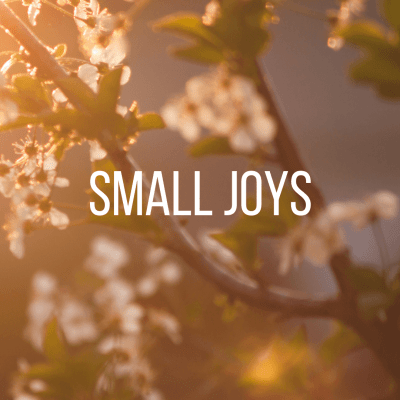 Small Joys: Volume 18