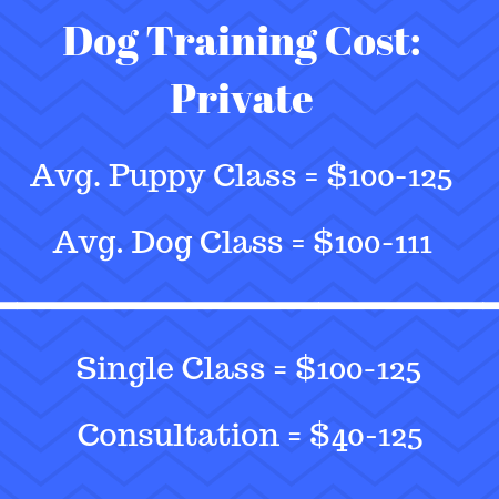 Private Dog Training Cost