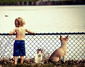 Reduction in allergies in children who have pets