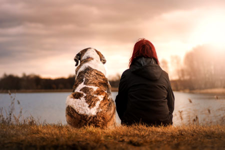 Companion dogs help with PTSD and loneliness