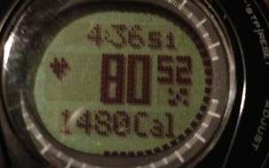 On 13 Feb. I burned about 1480 calories during the ski day. (If only I could eat less than 1470!)