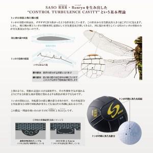 saso-theory 1