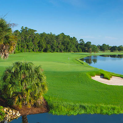 Walt Disney World Golf