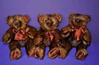 HamiltonS bears