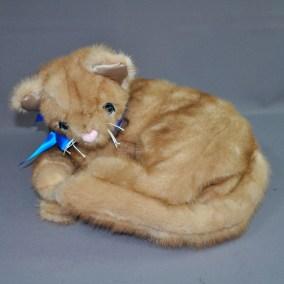 MA CAT 02 CURLING 01