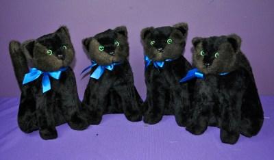 CameronP cats