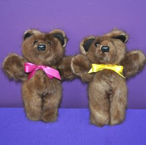 Friendship Bears LBrown01
