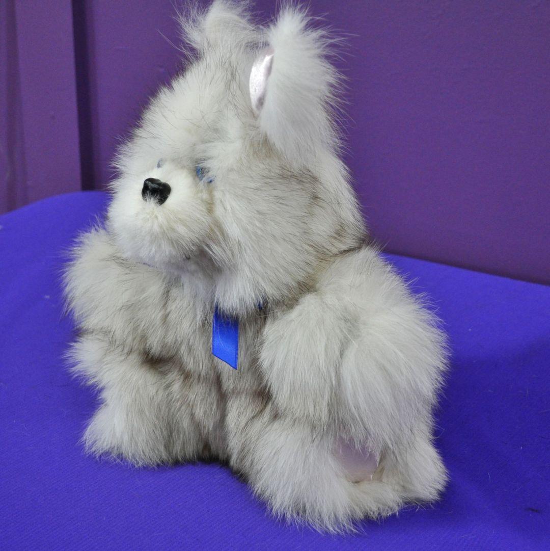 Foxie Fox bunny 02