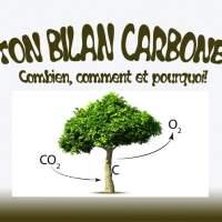 Bilan Crabone