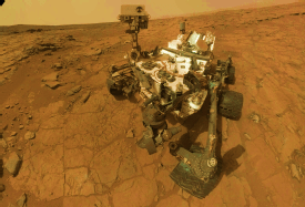 "A Self-Portrait by ""Curiosity"""
