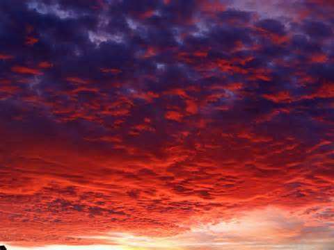 RED SKY AT NIGHT - SAILORS DELIGHT