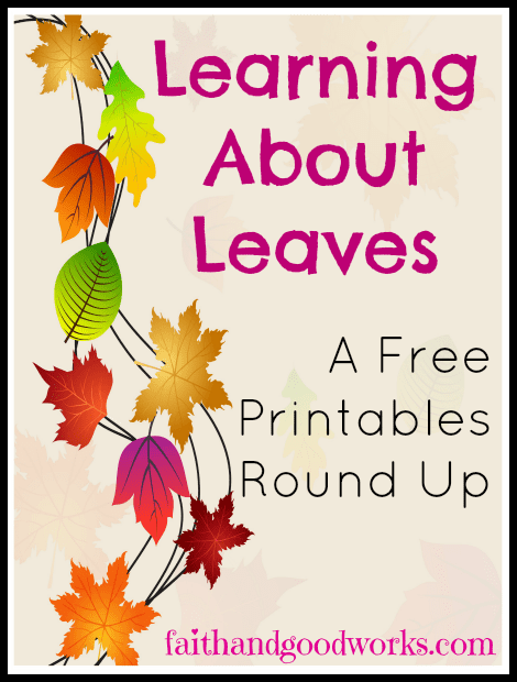 Learning About Leaves {Free Printables Round Up}
