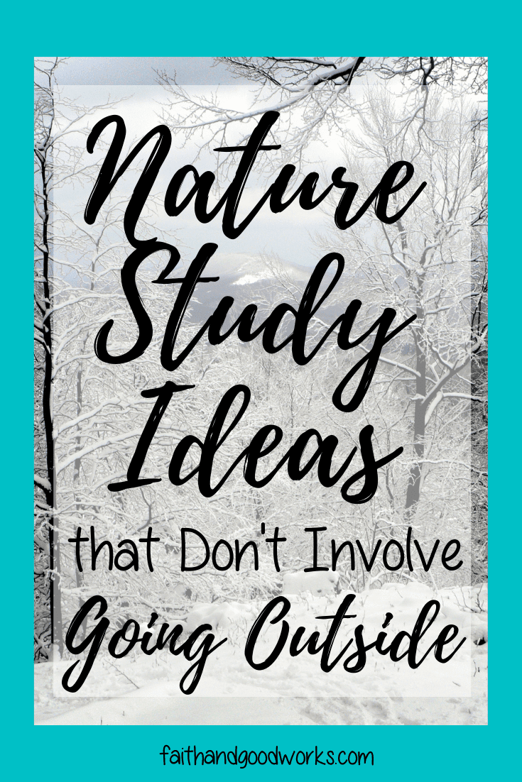 nature study ideas that don't involve going outside