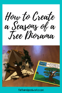 seasons of a tree diorama