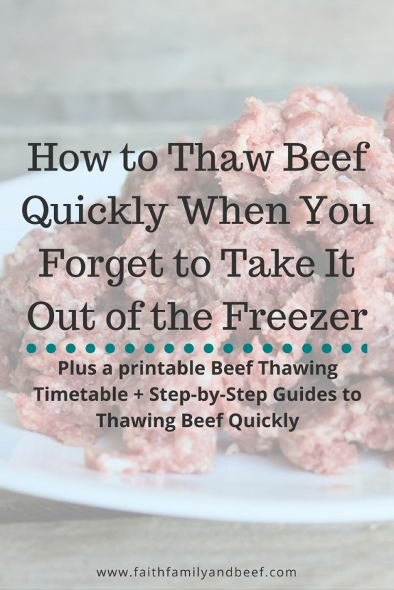 How to Thaw Beef Quickly When You Forget to Take It Out of the Freezer - plus a printable Beef Thawing Timetable + Step-by-Step Guides to Thawing Beef Quickly