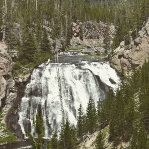The Grand Canyon Falls is one if the   must do activities in Yellowstone